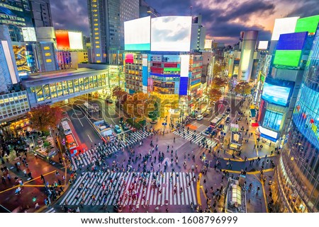 Shibuya Crossing  at twilight in Tokyo, Japan from above #1608796999