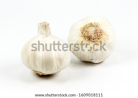 two closed white organic garlic bulbs with skin isolated on white background #1609018111