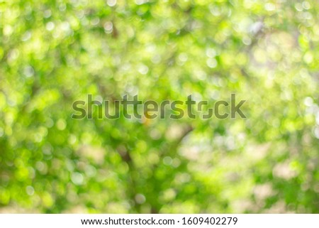 Abstract green bokeh background. Nature bokeh. Green bokeh. Use as Global Warming background. #1609402279