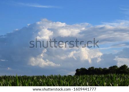 Big cloudscape over a sunny summer farm field #1609441777