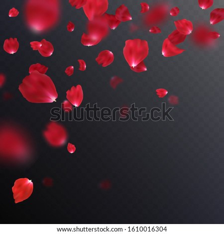 Falling realistic red rose petals isolated on dark backdrop. Vector illustration with beauty roses petal, applicable for design of greeting cards on March 8 and Valentine Day. Decoration element. EPS #1610016304