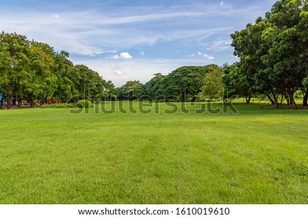 Green tree and green grass in public park with light blue sky and orange sunrise Royalty-Free Stock Photo #1610019610