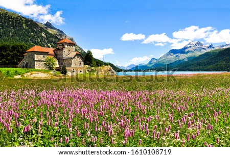 Summer mountain meadow flowers house view. Mountain lake house landscape. Summer meadow flowers at mountain lake #1610108719