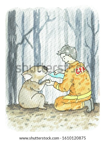 Pray for Australia volunteer fire service, cry koala drinking water, painting watercolor.