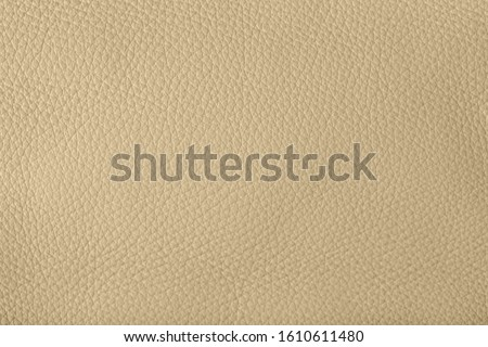 The ecru color beige leather sample . Abstract background with copy space, top view