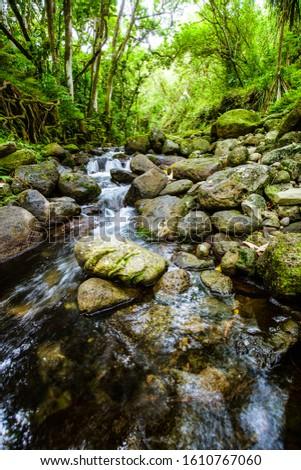 Flowing river from windward Oahu #1610767060