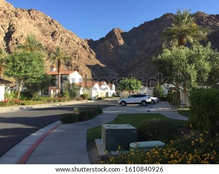 DESERT RESORTS ARIZONA - TREES AND DRIED NATURE #1610840926