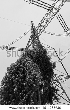 High voltage masts and silhouette of mast with streaky juniper. #1611256936