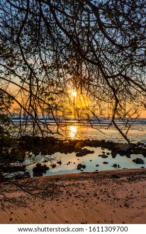 Amazing beach Sunrise view through Tree branches, Beautiful image from Funadhoo Maldive island Best place to visit  #1611309700