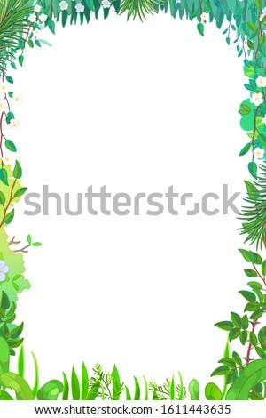 vector cartoon summer forest. green frame clip art #1611443635
