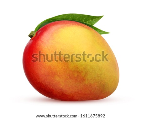 isolated mango. whole fruit isolated on a white background with a clipping path. one red-yellow mango with leaves. #1611675892