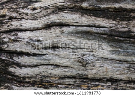 Wooden background. Wooden table. Wooden texture #1611981778
