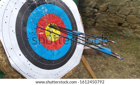 A bullseye with several arrows in it #1612450792
