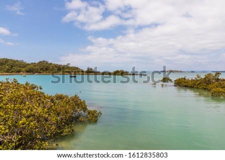 Lagoon at Rangitoto Island Scenic Reserve, Auckland, New Zealand #1612835803