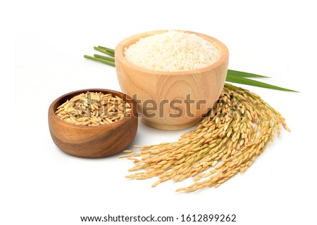White rice in wooden bowl with paddy rice ears and green blades isolated on white background. #1612899262