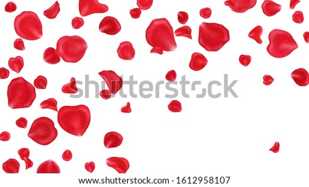 Red rose petals frame isolated on white background.Valentine day,wedding, mother day,March 8,international women day decoration,.Digital clip art.Watercolor illustration