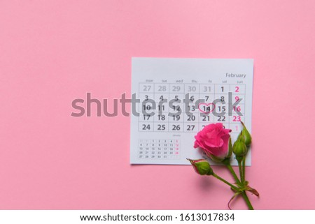 single rose flower lying on calendar page showing february 2020, valentin, valentine card concept, calendar, pink background, flatlay, copyspace, blank #1613017834