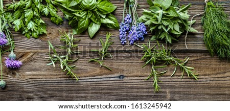 Collection of herbs, fresh garden herb on wooden background #1613245942