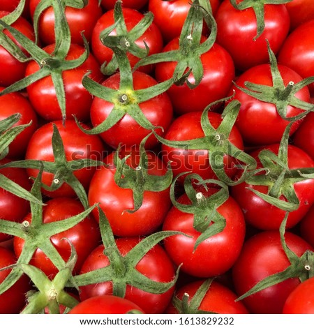 Macro Photo food vegetable tomato cherry. Texture cherry tomatoes on a branch. Cherry tomatoes are small juicy and red. #1613829232
