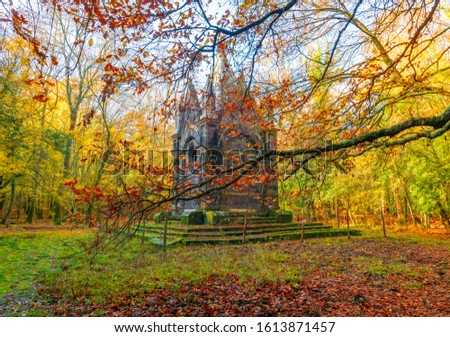 Torre Alfina (Lazio, Italy) - The sacred and magical wood called 'Bosco del Sasseto' during the autumn with foliage, beside the nedieval village with castle #1613871457