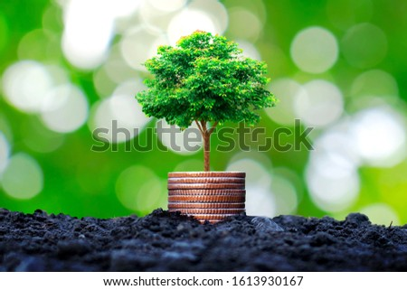The tree grows on a pile of coins or money with a blurred natural green background. #1613930167