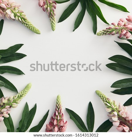 Floristics square banner with blank space. Pink Delphinium and tropical leaves border. Exotic plant and larkspur flower on white background. Florist store. Greeting card idea. Flower arrangement #1614313012