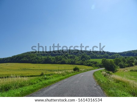 Village Road with tree and fog and curve Royalty-Free Stock Photo #1614316534