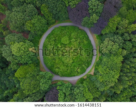 Roundabout in the middle of a forest in Belgium. Circular road surrounded by trees