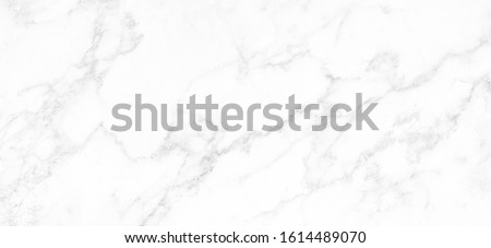 Marble granite white panorama background wall surface black pattern graphic abstract light elegant black for do floor ceramic counter texture stone slab smooth tile gray silver natural. #1614489070