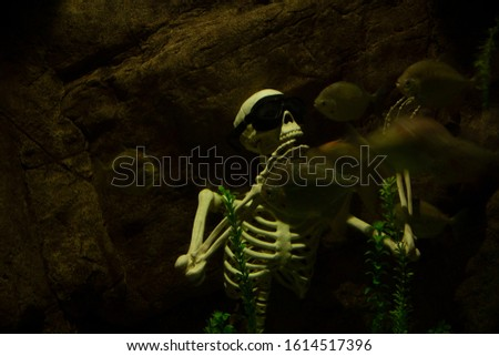 human skeleton resting underwater surrounded by piranhas