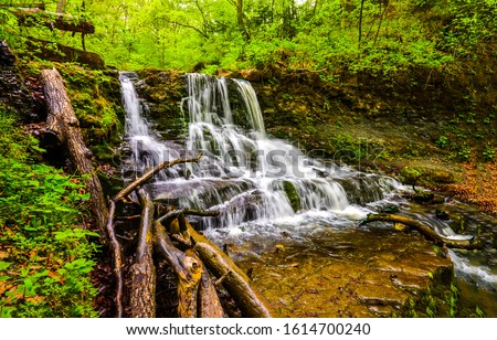 Deep forest waterfall stream view. Forest waterfall creek. Waterfall in deep forest. Waterfall river forest scene #1614700240