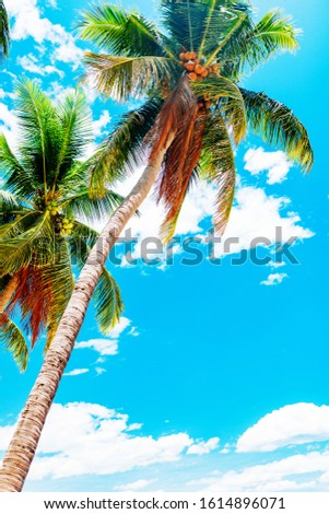 Empty paradise beach, blue sea Beautiful tropical island. Holiday and vacation concept, vacation in Asia #1614896071