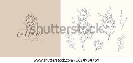 Cotton plant logo and branch. Hand drawn wedding herb, plant and monogram with elegant leaves for invitation save the date card design. Botanical rustic trendy greenery vector illustration #1614954769