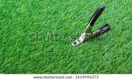 Pet Nail, Pair of nail cutters for manicure and pedicure grooming, dogs and cats on the grass. #1614996373