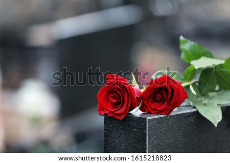 Red roses on black granite tombstone outdoors, space for text. Funeral ceremony #1615218823