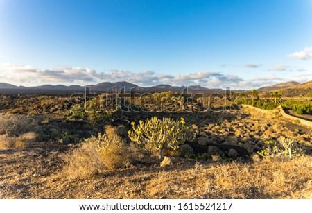 Lanzarote landscape. Rural landscape. Volcano landscape #1615524217