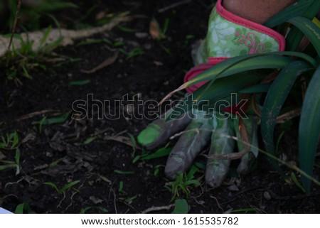 Hand gardening. Digging through weeds and dirt. #1615535782