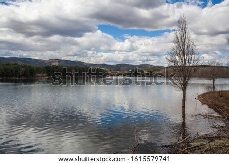 Landscape of trees in calm lake water with white clouds sky reflected and mountains in background #1615579741