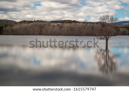 Landscape of tree in calm lake water with white clouds sky reflected and mountains in background #1615579747