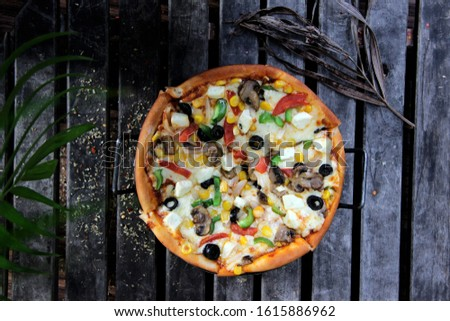 Tasty Gourmet pizza with beautiful back ground #1615886962