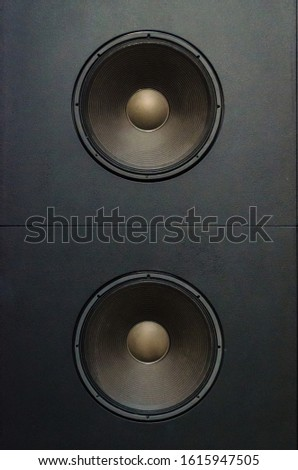 Detail of two woofer speakers #1615947505