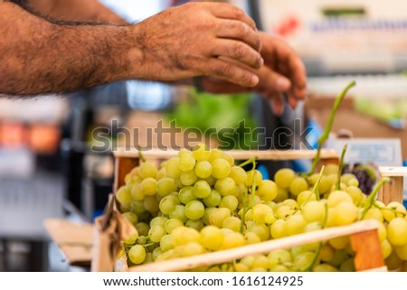 Man's hands vendor picking up placing green grapes in street market display in Rome, Italy famous campo de fiori during summer in crates #1616124925