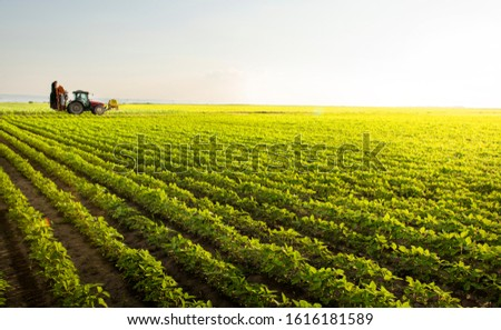 Tractor spraying pesticides on soy field  with sprayer at spring #1616181589