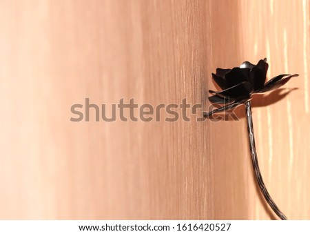 Black iron rose on a beige background #1616420527