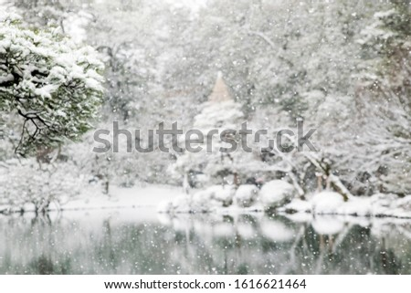 Abstract picture of snowfall; intentional background blur