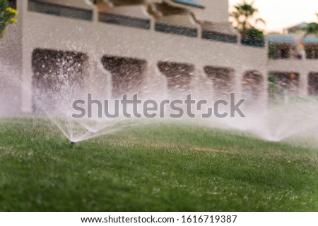 Automatic watering of lawns. Landscape. Mechanized water supply to vegetation. Lawn and garden care. #1616719387