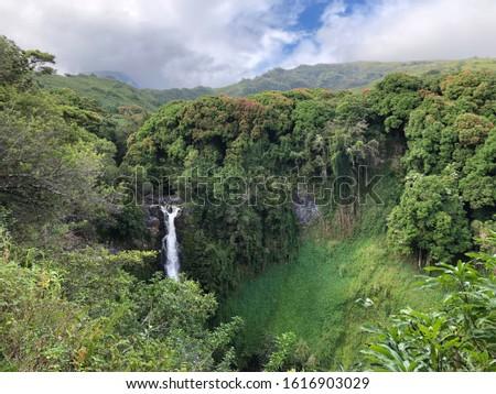 The Falls of Makahiku are a waterfall in lush greenery #1616903029
