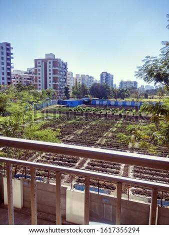 Cityscape urban countryside urban farm #1617355294