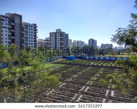 Cityscape urban countryside urban farm #1617355297