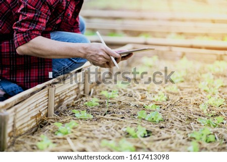 Asian man use tablet to examine check list of green salads in the vegetable garden for quality report record, Technology plantation #1617413098